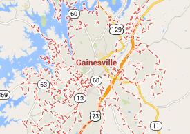 Gainesville Wildlife Control