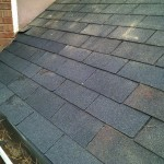 completed roof repair after squirrel removal