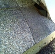 roof damage, squirrel removal