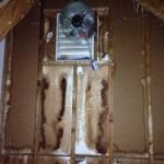 bat urine on wall, bat removal and bat trapping