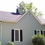 man on chimney searching for bats, bat removal and bat trapping