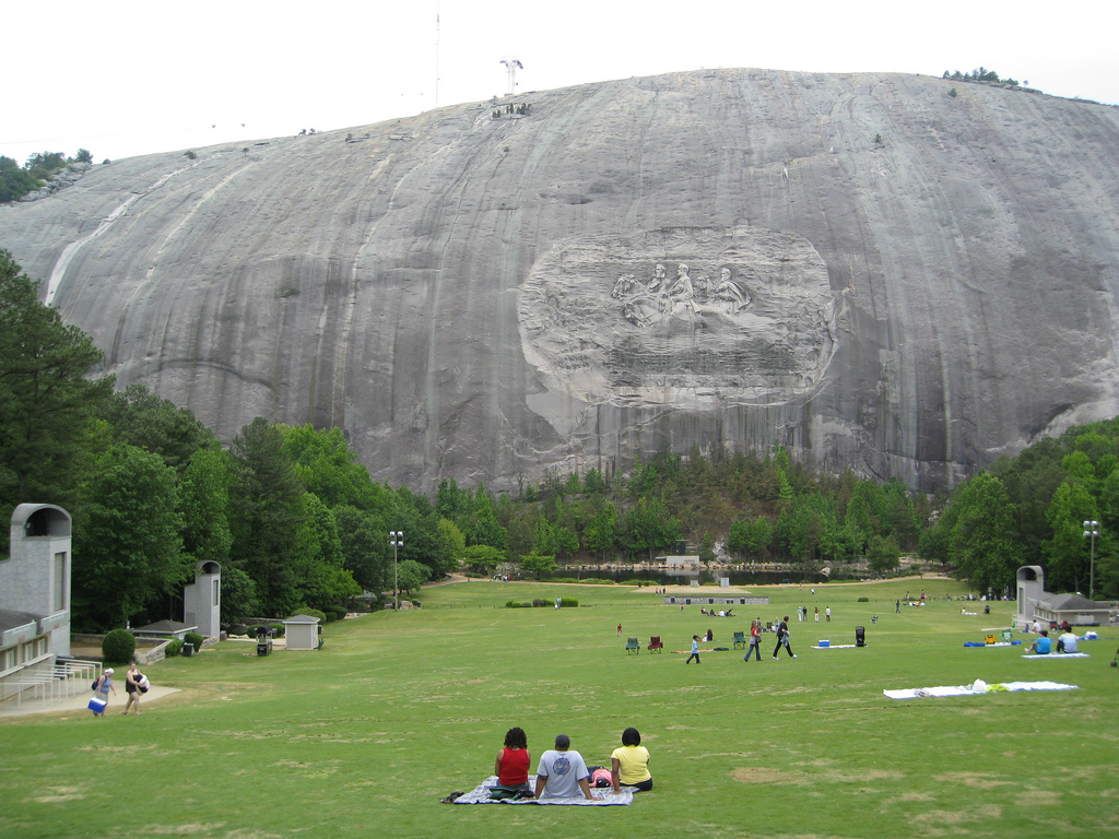 Wildlife Removal Stone Mountain Ga Stone Mountain