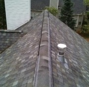 sealing ridge vent for flying squirrels